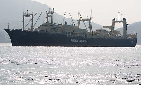 Japan_research_vessel_J_Sutton-Hibbert_ Greenpeace
