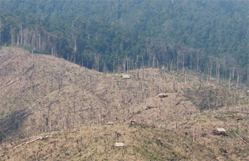 Deforestation for rubber plantations in Laos. Photo by Rhett A. Butler